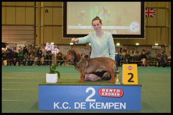 Juniorhandling Eindhoven 2013 met Louise Kerkmeester