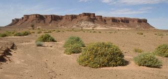Pistenfahrt nahe der algerischen Grenze in Richtung *Foum Zguid*