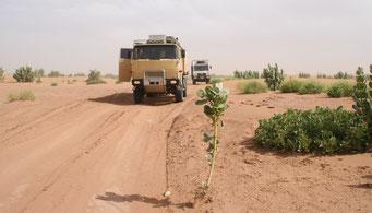 Fahrt durch die *SAHARA*