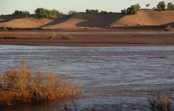 *M`Hamid* ... nach starken Regenfällen fließt nun wieder ein Fluß (Draa) durch die Sahara