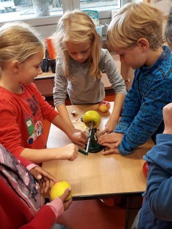 Obstverarbeitung - Apfelringe herstellen