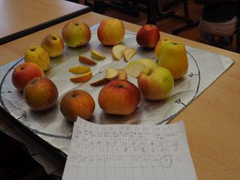 Erster Projekttag Apfeluhr
