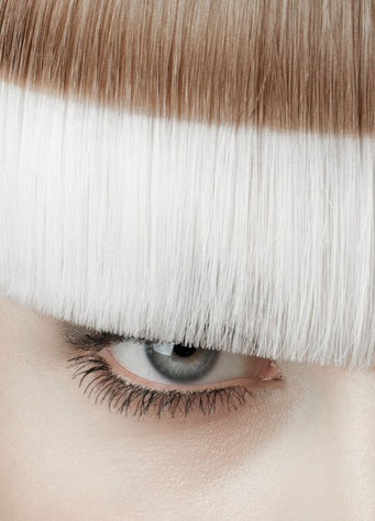 Colour 2011 - Hair: Alexander Lepschi - Foto: Stefan Dokoupil