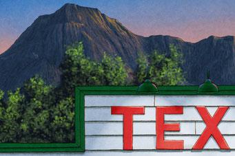 On peu deviner par la montagne d'arrière plan que la scène se déroule dans l'ouest nord américain.