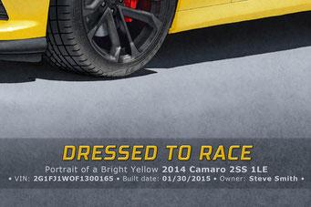 Le texte écrit au bas du portrait dessiné inclu le titre, un sous titre présentant la voiture et une ligne sur les spécifications de productions du modèle.