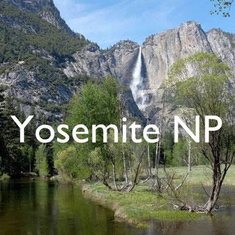 USA Südwesten Yosemite  Reiseblog