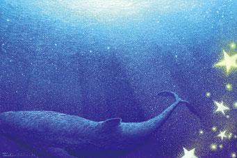 whale magic