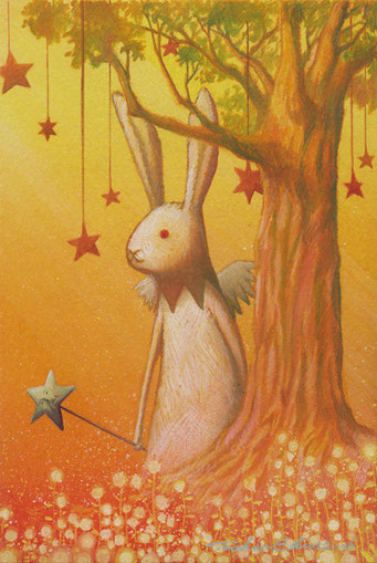 dusky rabbit