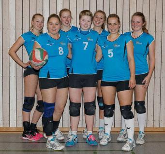 1_Damen Meisterschaft Landesliga 2014/15