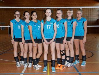 2.Damen Bezirksklasse 2013/14 5.Platz