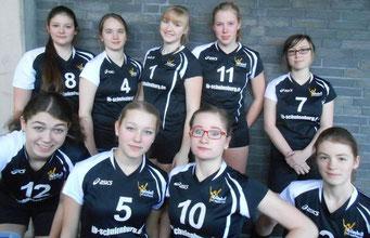 VfL Geesthacht Hamburger Meisterschaft U16 2014 2.Platz