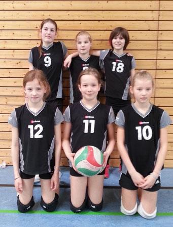VfL Geesthacht 2 Hamburger Meisterschaft U13 2014 6.Platz