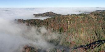Dicht bewaldete Hundschilen nordwestlich von Schindlet.
