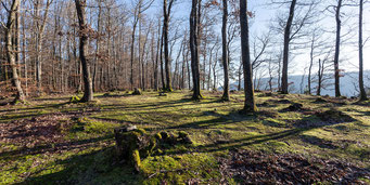 Auf der plateauartigen Hochfläche zuoberst auf dem «Stein».
