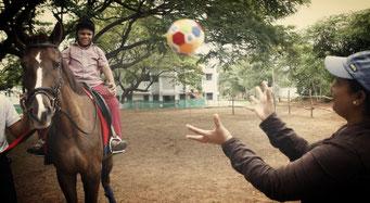 Psychothérapie avec le cheval