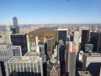 Vue de Central Park du haut du Top of the Rock