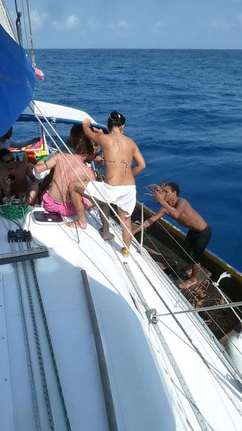 Fischer verkaufen uns frische Hummer auf See