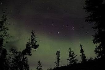 Nordlichter auf dem Top of the World Highway, Alaska