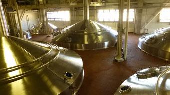 Budweiser Brauerei - zuerst geht's auf die Besichtigungl...
