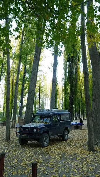 Camping Uspallata