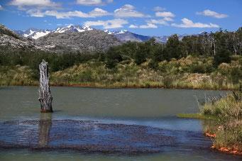 ... das Bilderbuch Patagonien