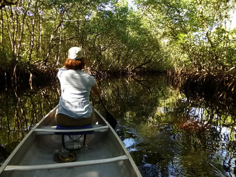 Kanu-Tour zum Zweiten - Collier-Seminole