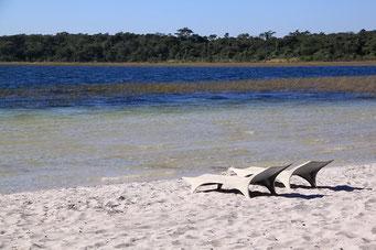 ... Laguna Blanca