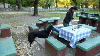 Unser ständiger Begleiter in Capilla del Montes...