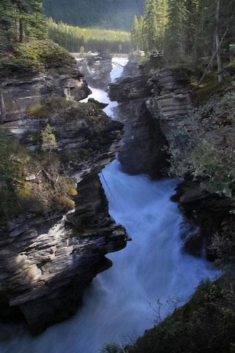 Atabasca Falls, Jasper N.P.