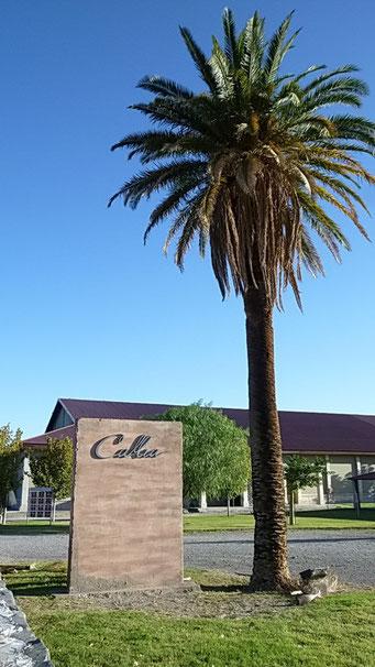 """""""Bodega Callia"""" leider wegen zu geschlossen."""