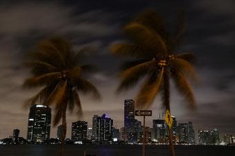 Skyline Miami - (c) Roli Zihlmann