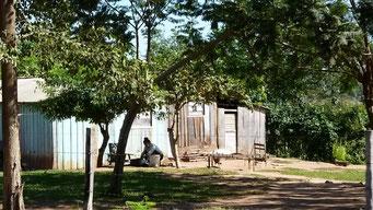 ... Guaranis