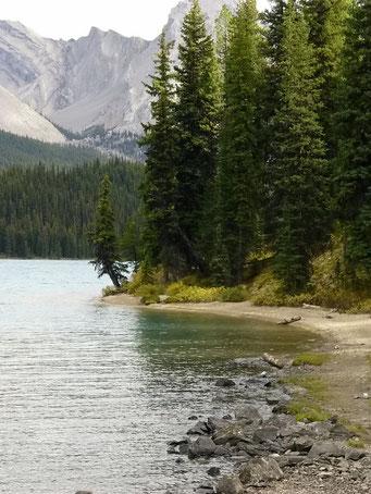 Maligne Lake, Jasper N.P.