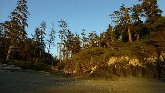 Pacific Rim N.P., Vancouver Island