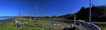 Grewingk Glacier Lake Trail, Alaska
