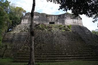 Die Mayas müssen wahrlich grosse Menschen gewesen sein, sonst hätten sie wohl kaum so hohe Treppen gebaut.