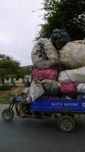 Transporte aller Mengen...