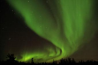 Spektakuläre Nordlichter, Yellowknife, Kanada