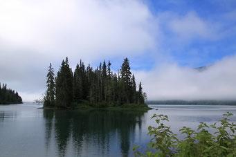 Wieder zurück auf dem Cassiar Highway, British Columbia