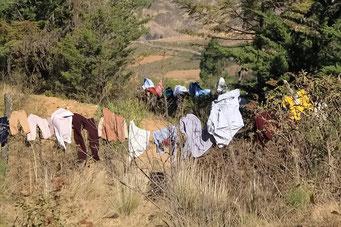 Wäsche trocknen am Strassenrand; jede Hecke, jeder Zaun wird genutzt