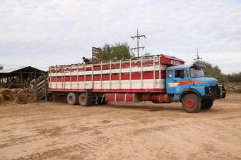 Estancia Mosil - überlanger Viehtransporter