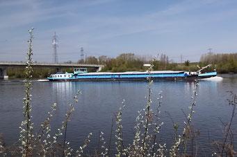 Flussfrachter auf der Donau
