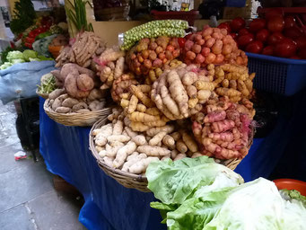 Markt in Tarija, verschiedene Kartoffel-Sorten