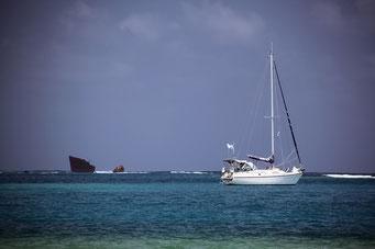Andere haben sich über ihre Ankunft auf den Inseln nicht so gefreut wie wir...