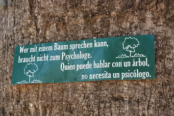 Auch die Bäume sprechen deutsch