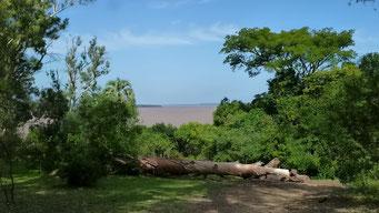 El Palmar N.P. mit Blick auf Rio Uruguay