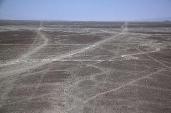 Die Linien von Nazcar