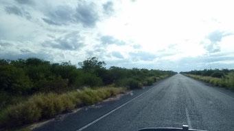 Trans Chaco - so schlecht scheint die Strasse nicht...