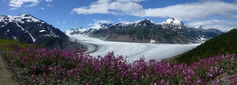 Salmon Glacier bei Hyder, Alaska