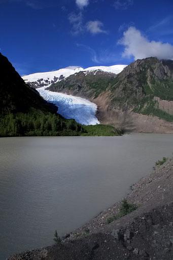 Erste Gletscher auf dem Weg nach Stewart
